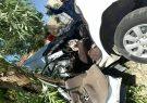 تخطی از سرعت مطمئنه در شهرستان ایوان حادثه آفرید