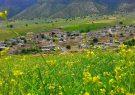 دستور استاندار ایلام برای رفع مشکل یک روستا