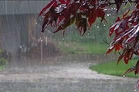 هوای ایلام از امروز بارانی میشود