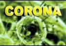 شناسایی ۳۳۵ مورد جدید مبتلا به کرونا ویروس در استان